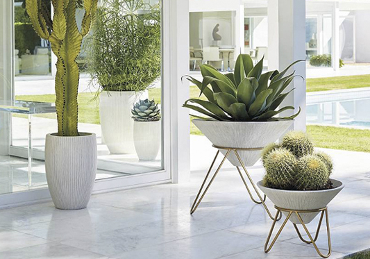 Outdoor Planter Inspiration