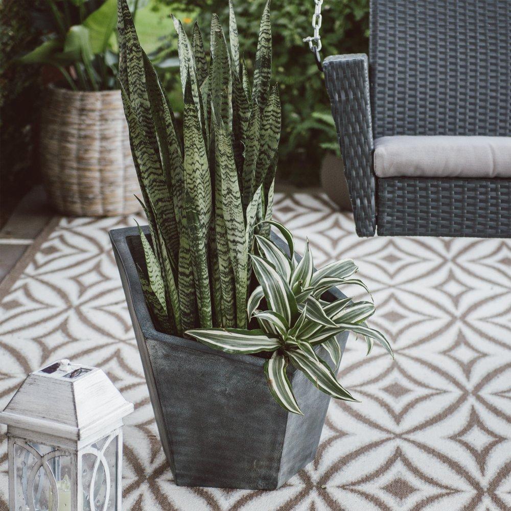 Bristol Terracotta Planter